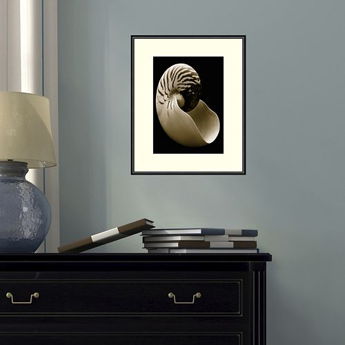 Amanti Art Nautilus Framed Wall Art