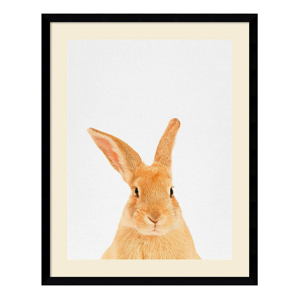 Amanti Art Rabbit Framed Wall Art