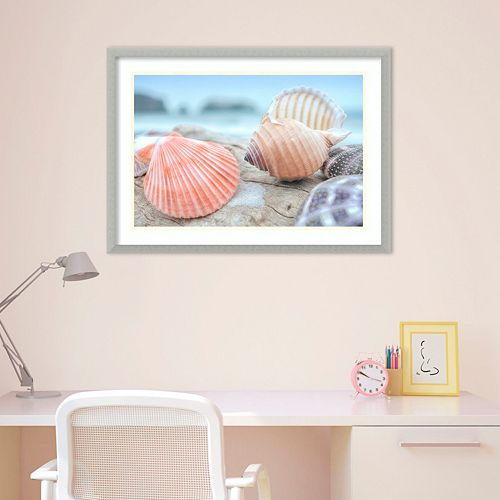 Amanti Art Rodeo Beach Shells 10 Framed Wall Art