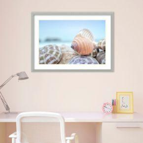 Amanti Art Rodeo Beach Shells 15 Framed Wall Art