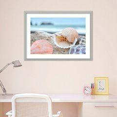 Amanti Art Rodeo Beach Shells 9 Framed Wall Art
