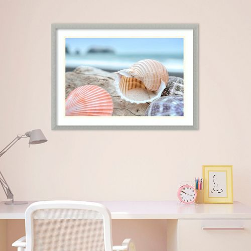 Amanti Art Rodeo Beach Shells 9 Framed Wall Art