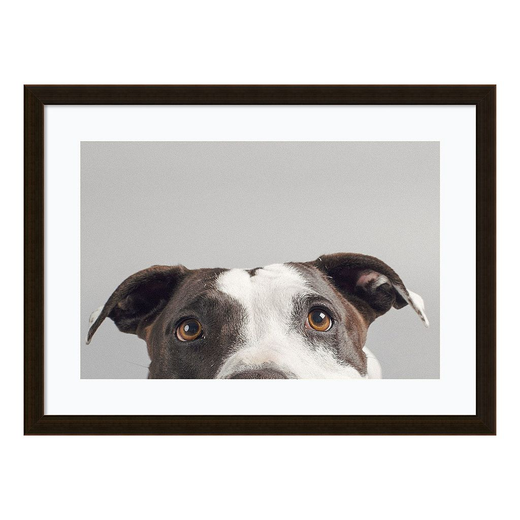 Amanti Art Ruby Dog Framed Wall Art