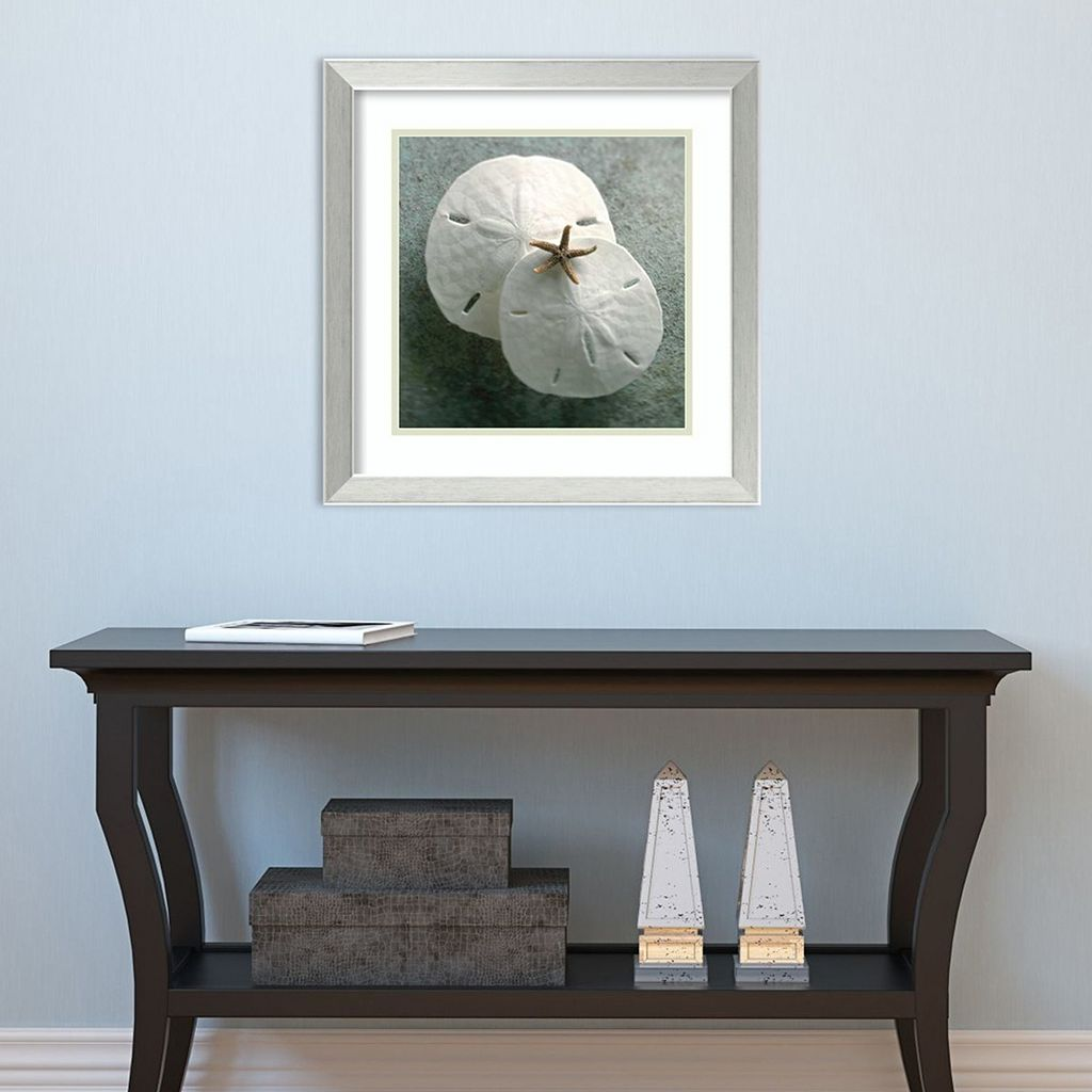 Amanti Art Sand Dollars Framed Wall Art