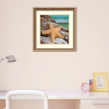 Amanti Art Shell & Driftwood II Framed Wall Art