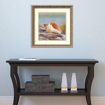 Amanti Art Shell & Driftwood IV Framed Wall Art