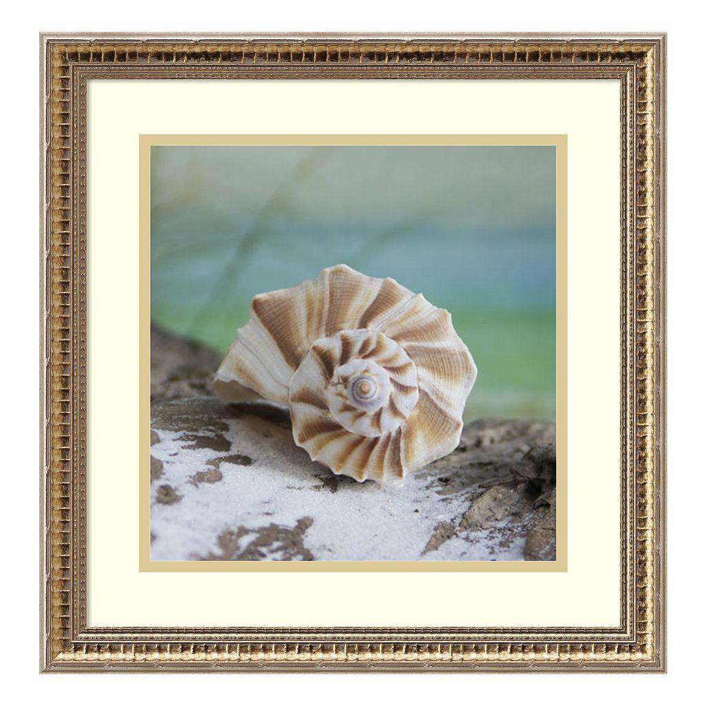 Amanti Art Shell & Driftwood I Framed Wall Art