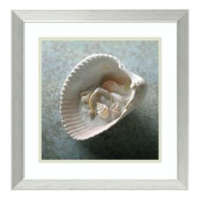 Amanti Art Shells In Shell Framed Wall Art