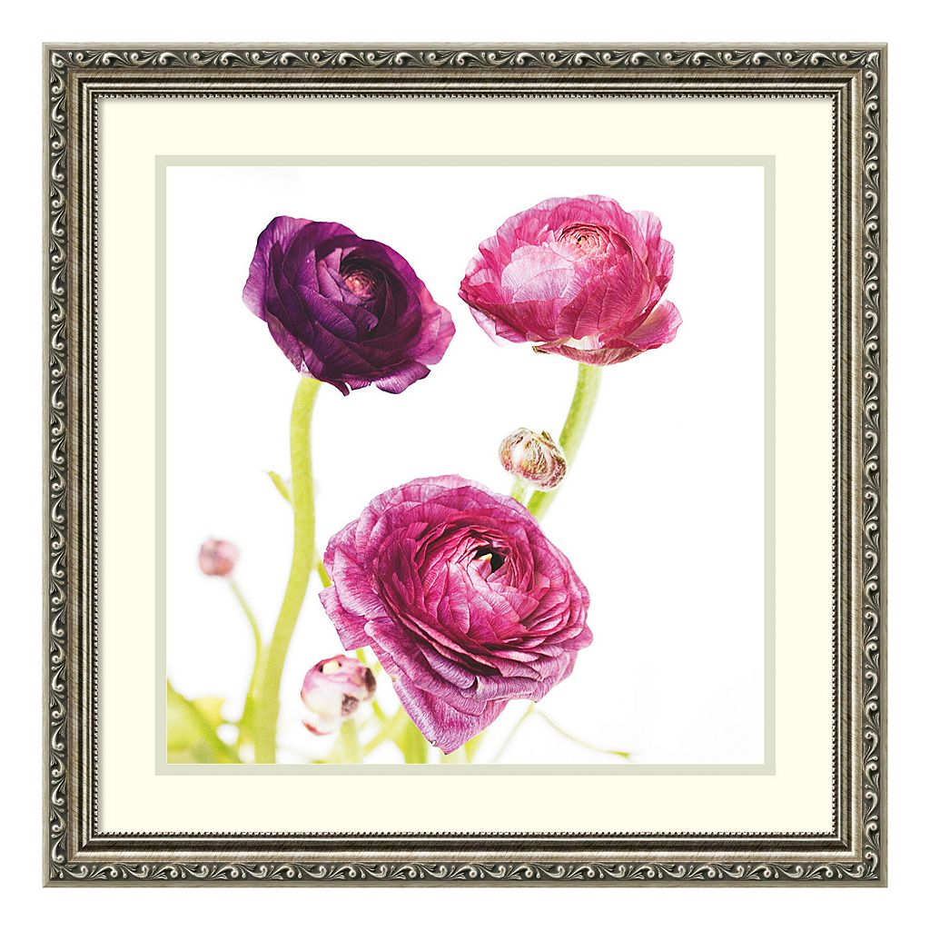 Amanti Art Spring Ranunculus I Framed Wall Art