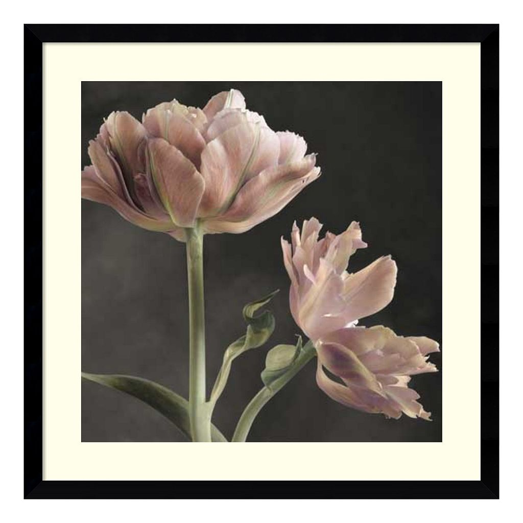 Amanti Art Tulip II Framed Wall Art
