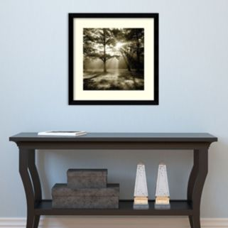 Amanti Art Wild Forest Framed Wall Art