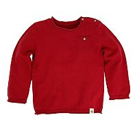 Baby Boy Burt's Bees Baby Organic Pocket Sweater