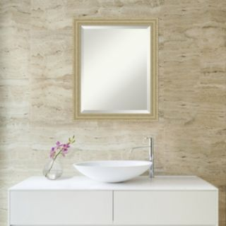 Amanti Art Champagne Finish Wall Mirror