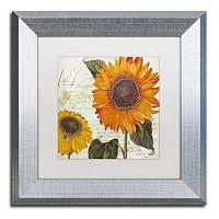 Trademark Fine Art Sundresses II Silver Finish Framed Wall Art
