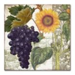 Trademark Fine Art Dolcetto I Canvas Wall Art