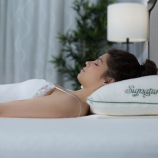 Protect-A-Bed Multi-Sleep Position Signature Pillow