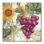 Trademark Fine Art Dolcetto II Canvas Wall Art