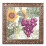 Trademark Fine Art Dolcetto II Ornate Framed Wall Art