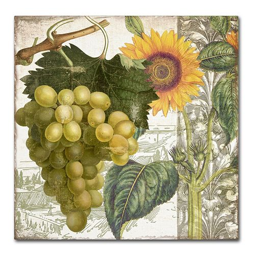 Trademark Fine Art Dolcetto III Canvas Wall Art