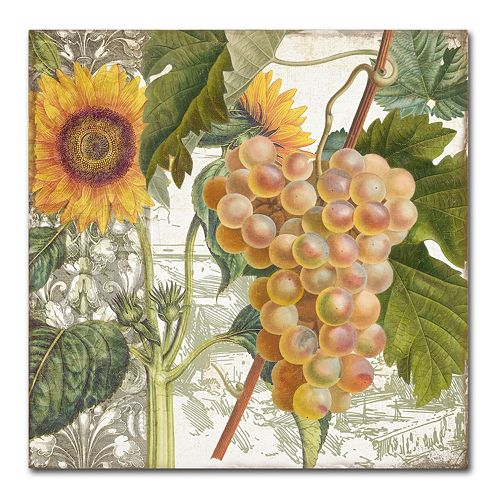 Trademark Fine Art Dolcetto IV Canvas Wall Art