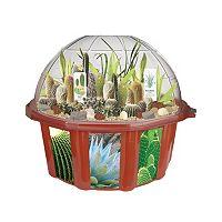 DuneCraft Dome Terrarium Desert Biodome