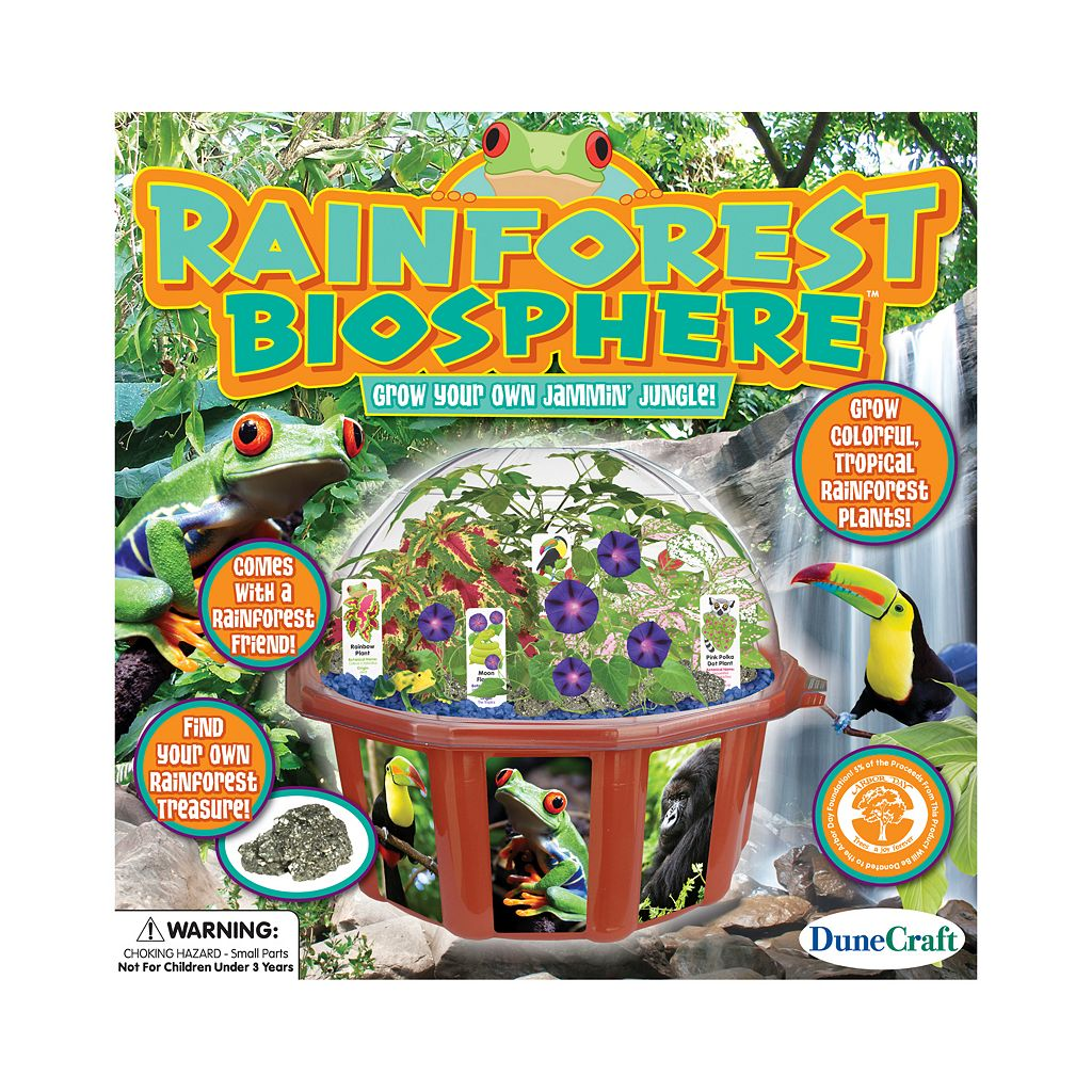 DuneCraft Dome Terrarium Rainforest Biosphere