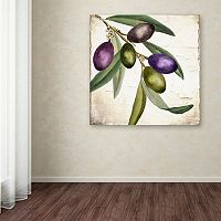 Trademark Fine Art Olive Branch I Canvas Wall Art