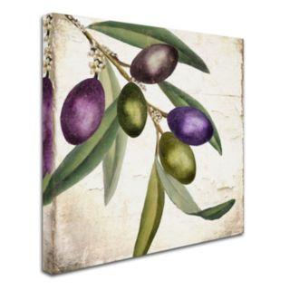 Trademark Fine Art Olive Branch I Canvas Wall Art