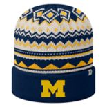 Adult Top of the World Michigan Wolverines Dusty Beanie