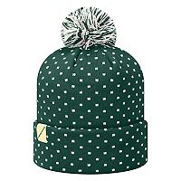 Adult Top of the World Oregon Ducks Firn Beanie