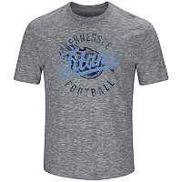 Big & Tall Majestic Tennessee Titans Slubbed Tee