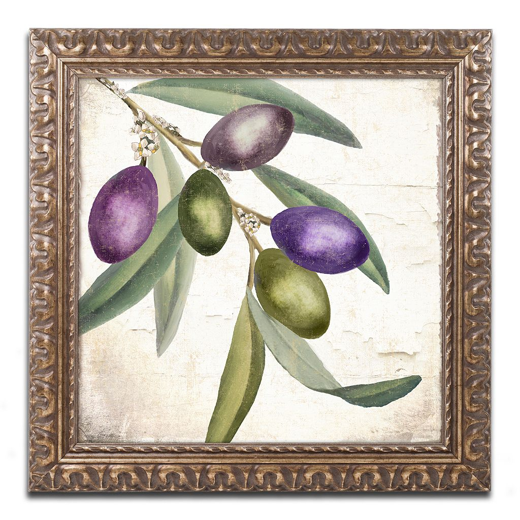 Trademark Fine Art Olive Branch I Ornate Framed Art
