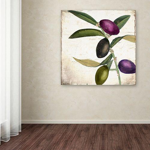 Trademark Fine Art Olive Branch II Canvas Wall Art