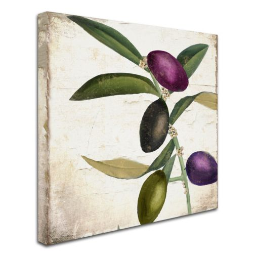 Trademark Fine Art Olive Branch II Canvas Wall Art