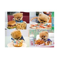 Willow Creek Press 1000-pc. Jiffpom Jigsaw Puzzle