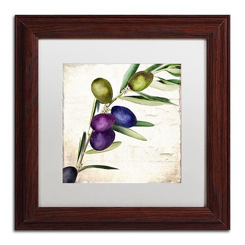 Trademark Fine Art Olive Branch III Traditional Framed Wall Art