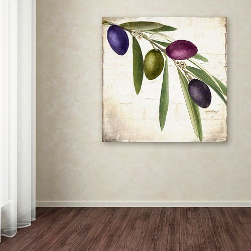 Trademark Fine Art Olive Branch IV Canvas Wall Art