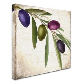 Trademark Fine Art Olive Branch IV Canvas Wall Art