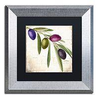 Trademark Fine Art Olive Branch IV Framed Wall Art