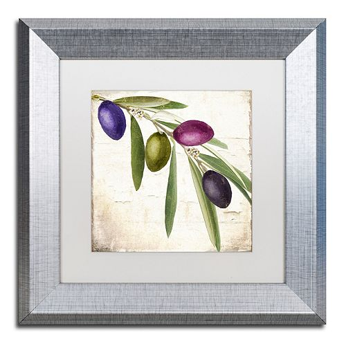 Trademark Fine Art Olive Branch IV Framed Wall Art