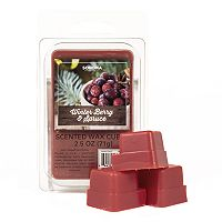 SONOMA Goods for Life™ Winter Berry & Spice Wax Melt 6-piece Set