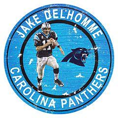Carolina Panthers Jake Delhomme Wall Decor