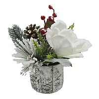 St. Nicholas Square® 8.5-in. Artificial Magnolia & Birch Table Decor