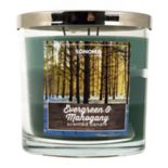 SONOMA Goods for Life™ 14-oz. Evergreen & Mahogany Candle Jar