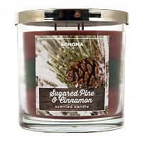 SONOMA Goods for Life™ 14-oz. Sugared Pine & Cinnamon Candle Jar