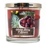 SONOMA Goods for Life™ 14-oz. Winter Berry & Spruce Candle Jar