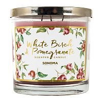 SONOMA Goods for Life™ 14-oz. White Birch & Pomegranate Candle Jar