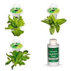 Miracle-Gro AeroGarden Heirloom Salad Greens 3-Pod Seed Kit