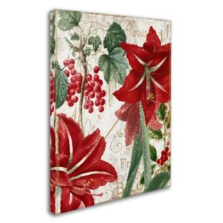 "Trademark Fine Art Amaryllis ""Paris"" Canvas Wall Art"