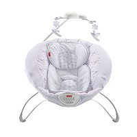 Fisher-Price Fairytale Deluxe Rock 'n Play Sleeper
